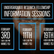 Research Fellowship Flyer