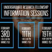 Research Fellowship Flyer